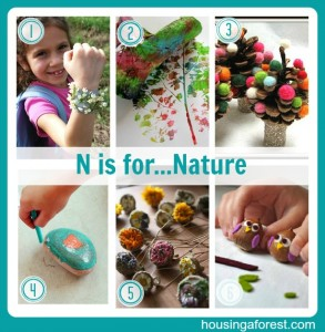 N is for...Nature