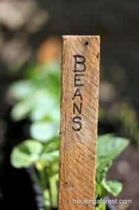 Repurposed Garden Stakes