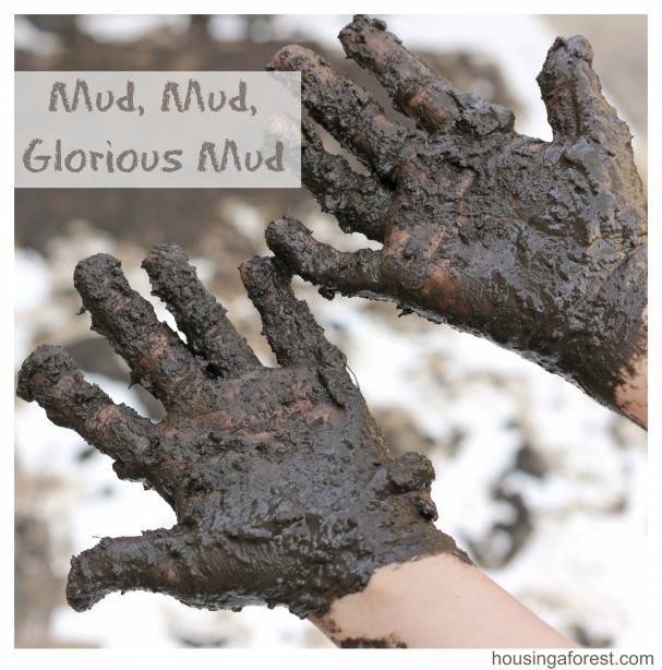 Mud Mud Glorious Mud