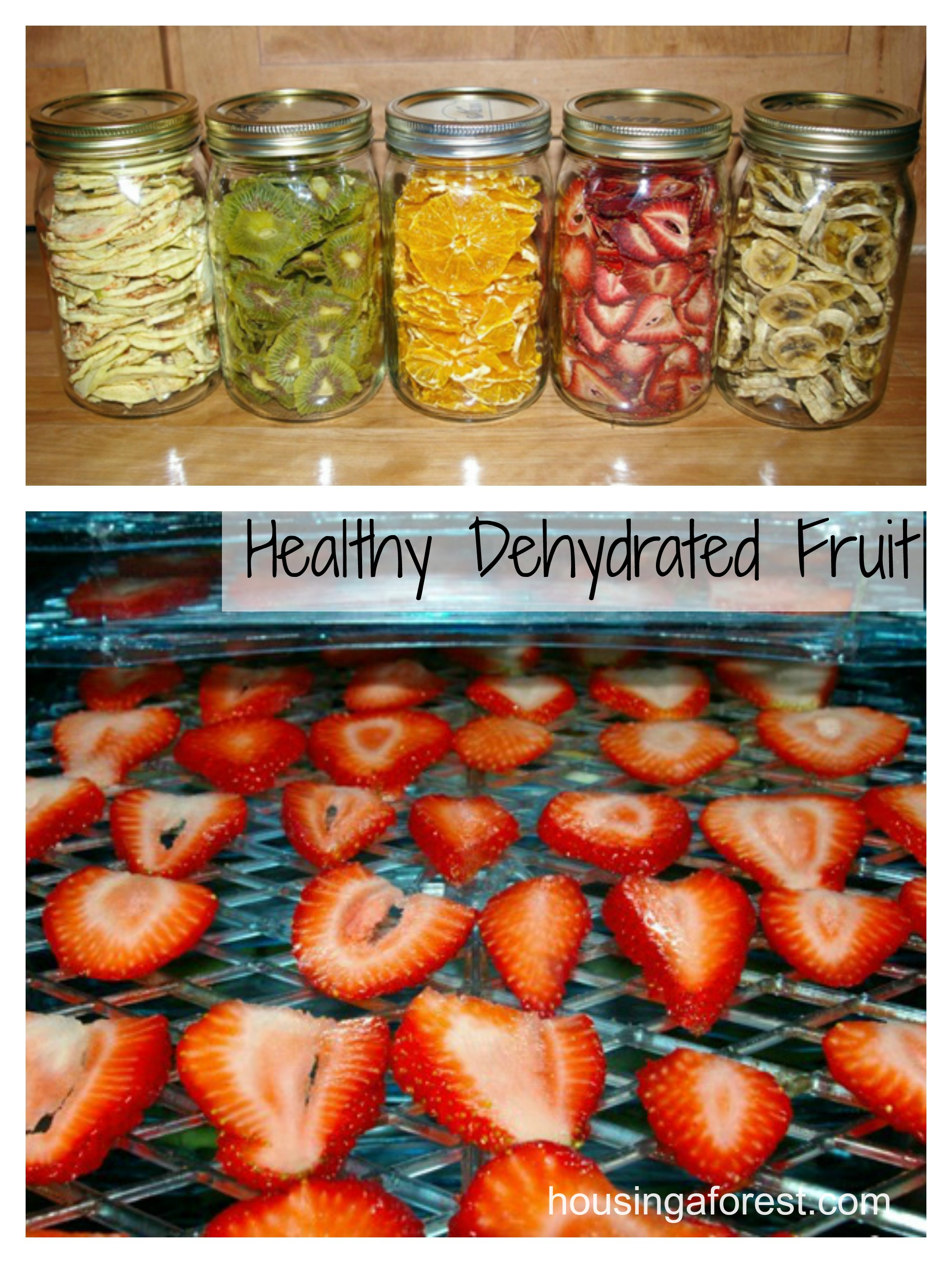 how to dehydrate fruit healthy fruits and veggies