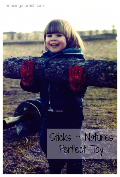 Sticks ~ Natures Perfect Toy
