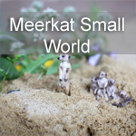 Meerkat Small World: a Child-Led Literacy Adventure