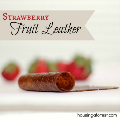 Oven Dried Fruit Leather ~ No Dehydrator Needed!