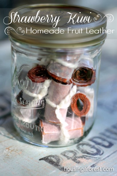Homemade Dehydrated  Fruit Leather ~ Strawberry Kiwi