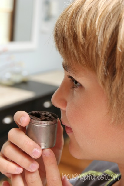 The Smell Detective ~ Explore your sense of smell.  Fall Kids Activity