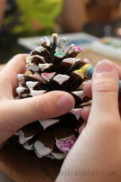 Nature Art ~ Oil Pastel Pine Cones