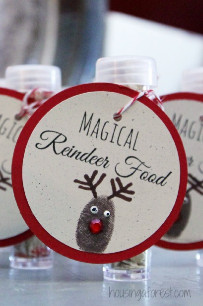 Magical Reindeer Food ~ Cute Christmas Eve tradition that your kids will love.  Set out cookies and milk for Santa and sprinkle some food for his reindeer too!